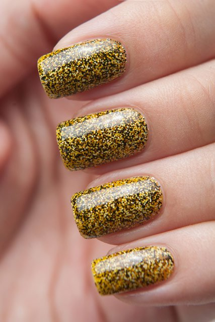 Caviar 1002 - Yellow Boxfish
